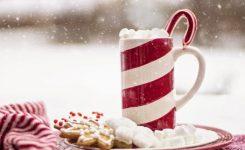 ¡¡S.O.S. necesito el manual sobre cómo sobrevivir a la Navidad sin pareja!!